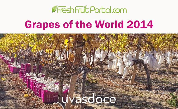 Grapes of the World 2014
