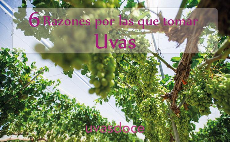 6 razones por las que tomar uvas