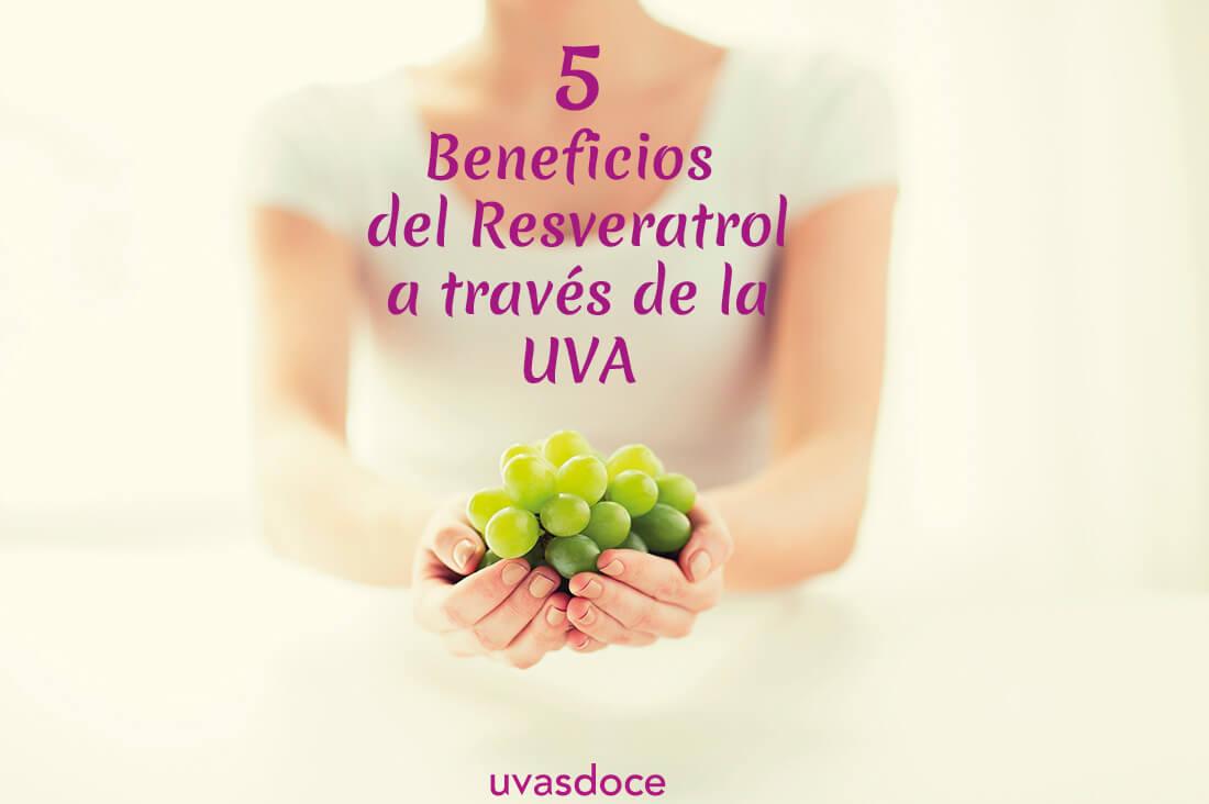 5 Beneficios del Resveratrol a través de la uva