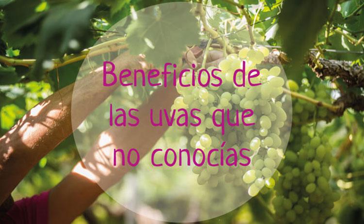 Beneficios de las uvas que no conocías