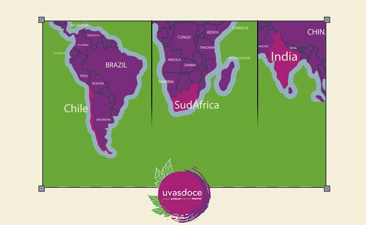 Habla el mercado de la uva en India