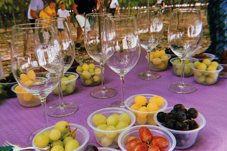 Almuerzo con uvas, quesos y vino