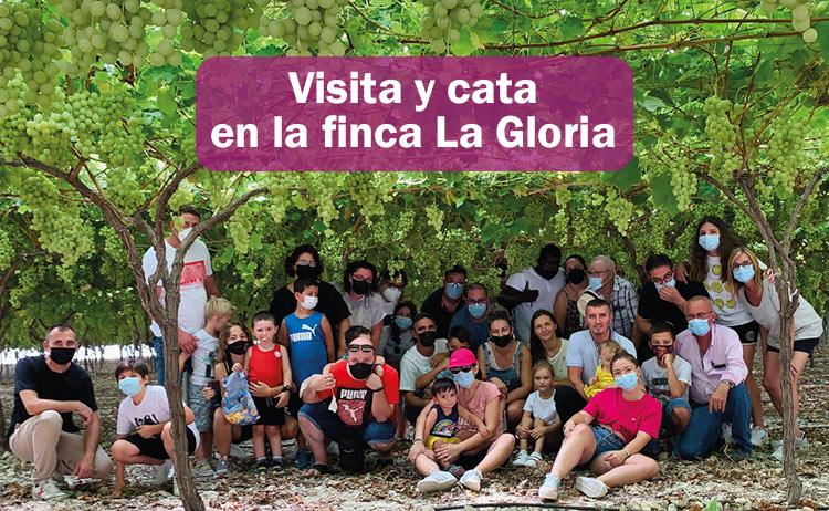 Visita con cata de uvas en la finca La Gloria de Uvasdoce