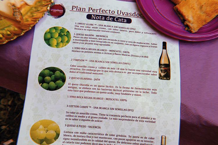Visita-cata con variedades de uva