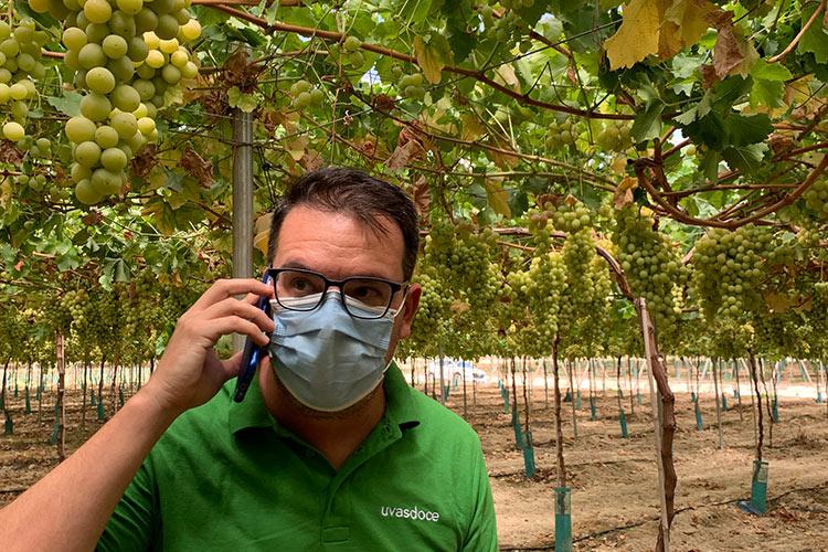 Supervisión técnicos Uvasdoce en la guarda de la uva